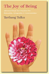 The Joy of Being, Author Tarthang Tulku | Publisher: Dharma Publishing International